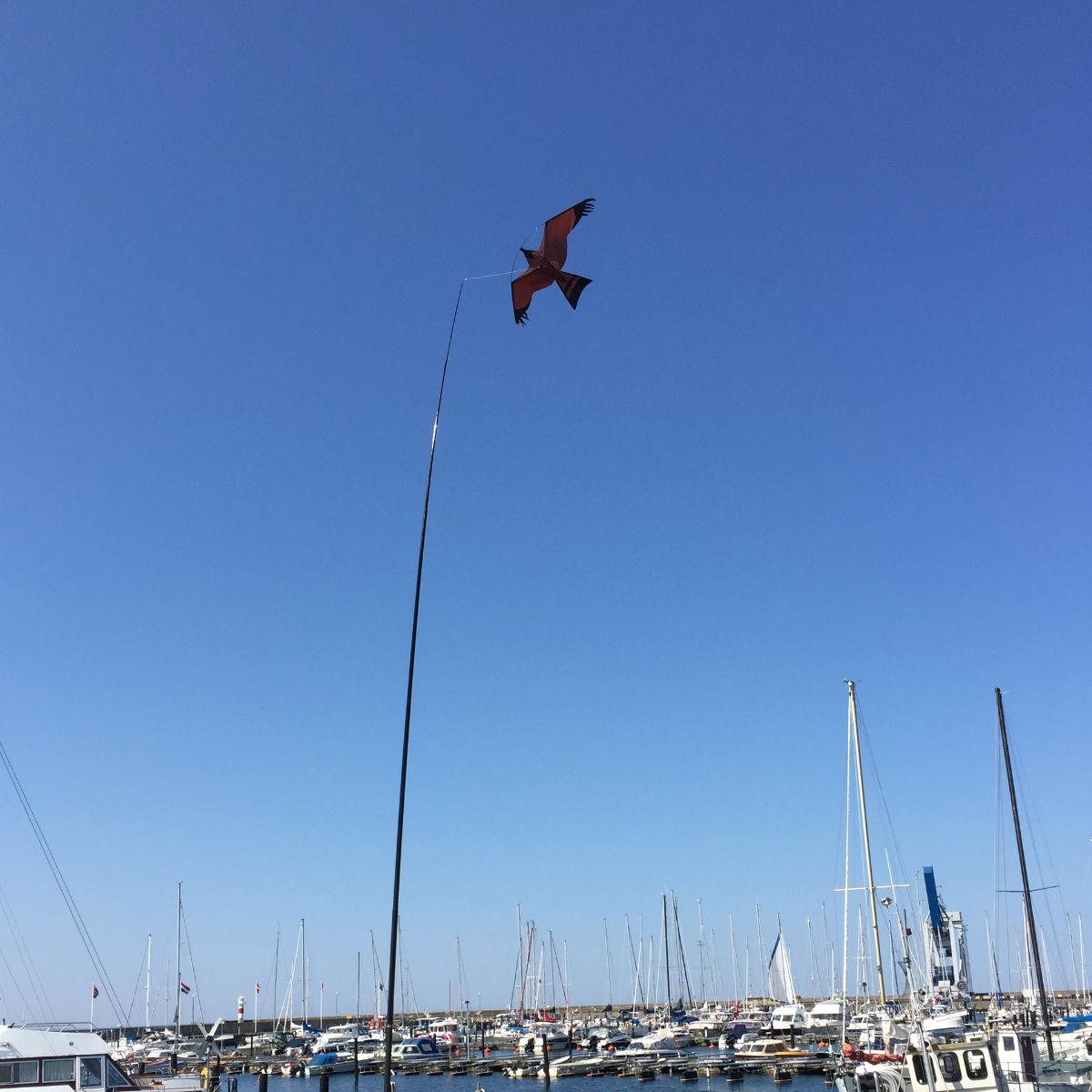Fågelskrämma & Skadedjur | Komplett Fågelskrämma Ormvråken 5 meter