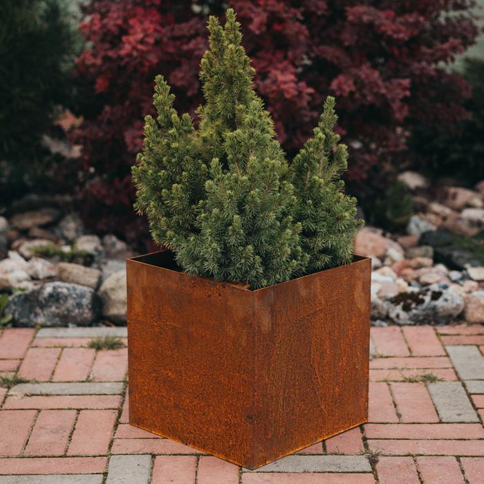 Planteringskärl | Planteringskärl Fiora i Corten