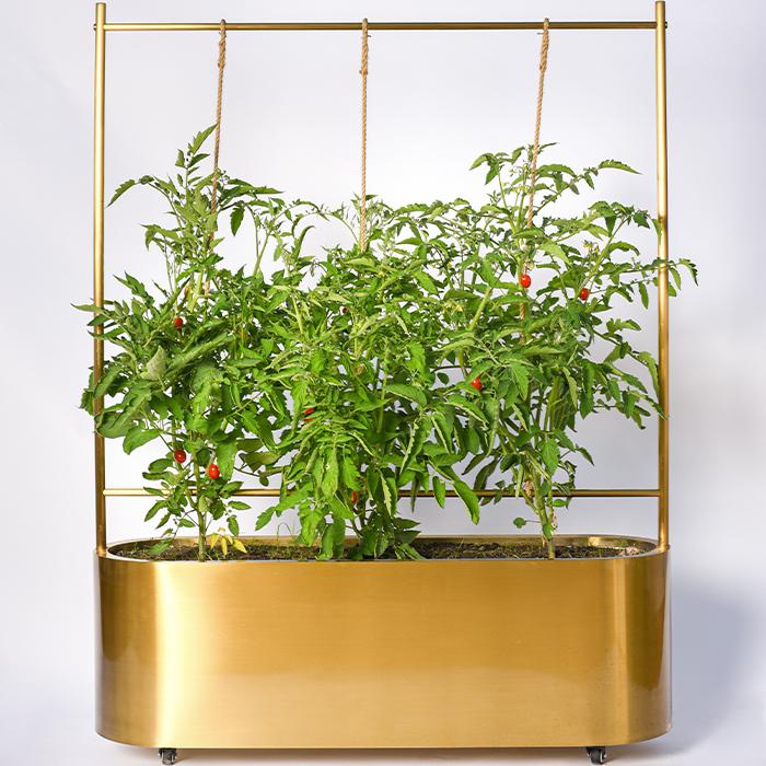 Planteringskärl   Plantbox Smooth XL - Mässing